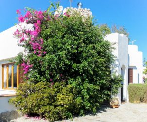 Villa   à Porto Cristo Novo pour 6 personnes avec piscine privée p1