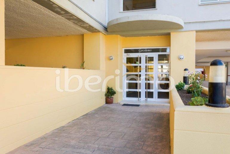 Appartement   à Oropesa del Mar pour 6 personnes avec piscine commune p35