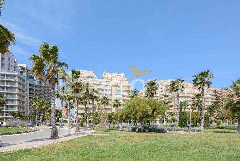 Appartement   à Oropesa del Mar pour 6 personnes avec piscine commune p31