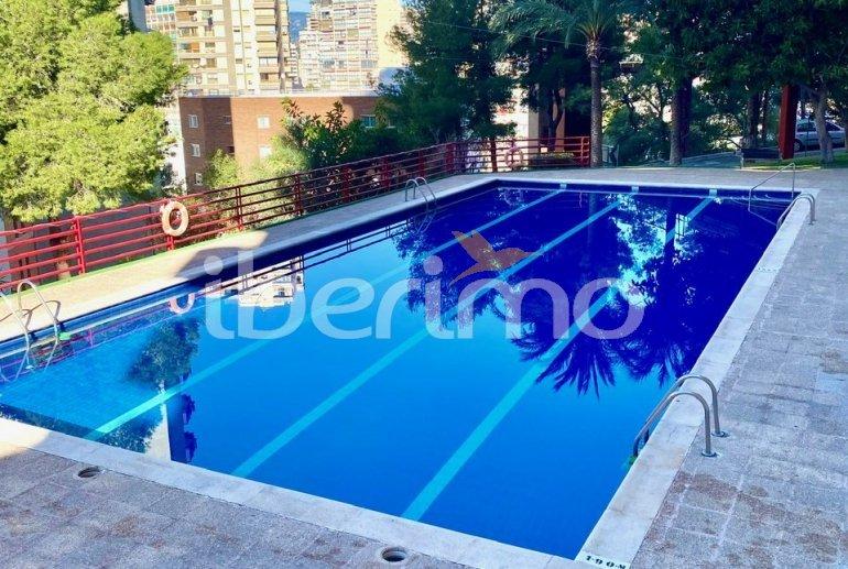 Appartement   à Benidorm pour 8 personnes avec piscine commune p3