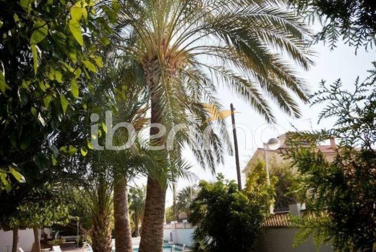 Appartement   à Benicarlo pour 4 personnes avec piscine commune p3