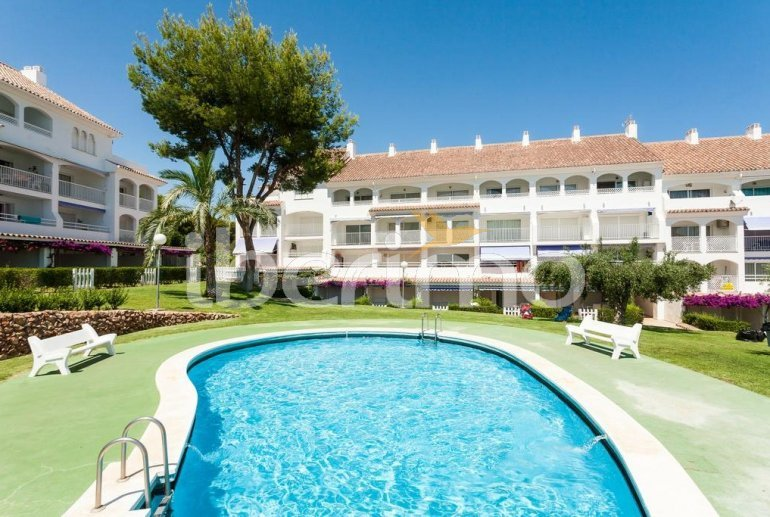 Appartement   à Alcoceber pour 6 personnes avec piscine commune et proche mer p0