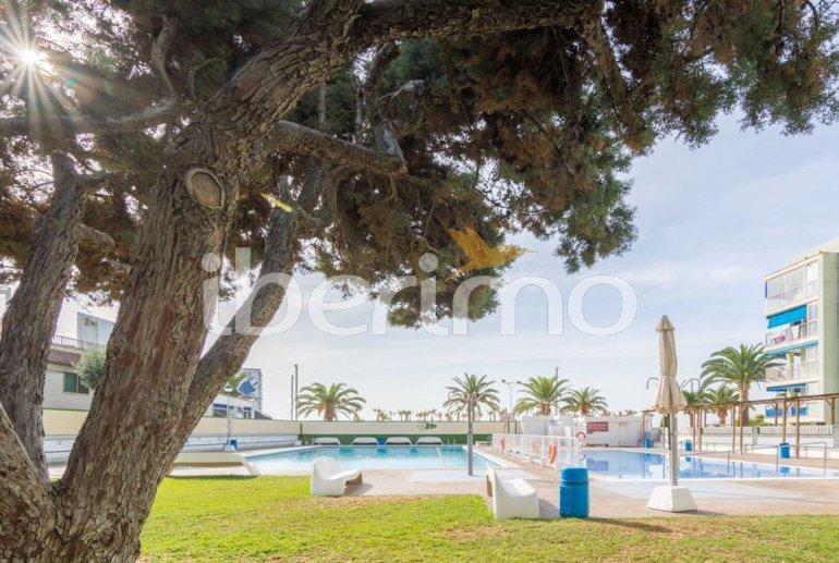 Appartement   à Oropesa del Mar pour 8 personnes avec piscine commune p37