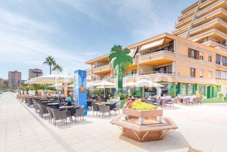 Appartement   à Oropesa del Mar pour 4 personnes avec piscine commune p20