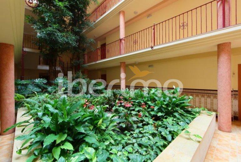 Appartement   à Sant Carles de la Rapita pour 4 personnes avec piscine commune p5