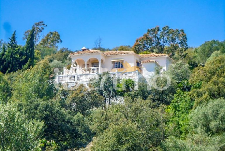 Villa   à La Axarquía - Almogía pour 6 personnes avec piscine privée p6