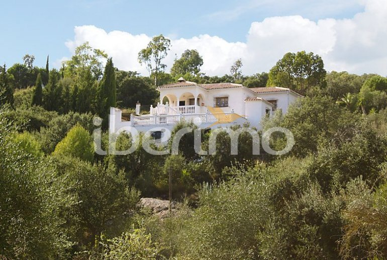 Villa   à La Axarquía - Almogía pour 6 personnes avec piscine privée p7