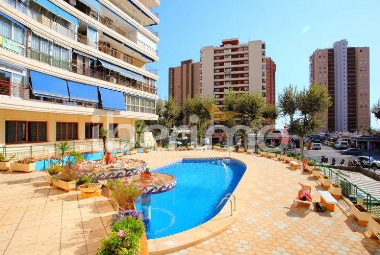 Appartement   à Benidorm pour 6 personnes avec piscine commune p0