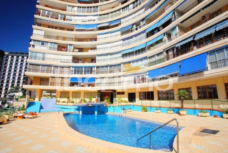 Appartement   à Benidorm pour 6 personnes avec piscine commune p4