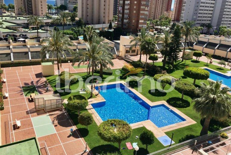 Appartement climatisé  à Benidorm pour 6 personnes avec piscine commune p0