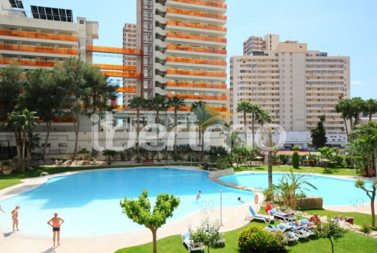 Appartement   à Benidorm pour 5 personnes avec piscine commune p6
