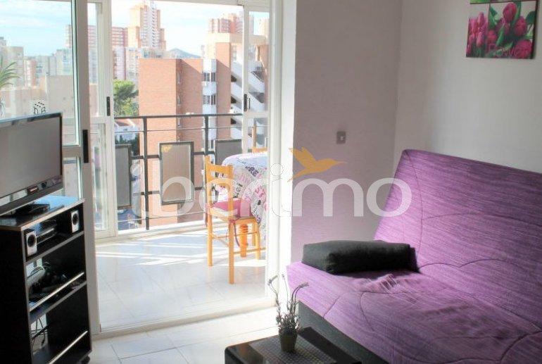 Appartement   à Benidorm pour 2 personnes avec piscine commune p3